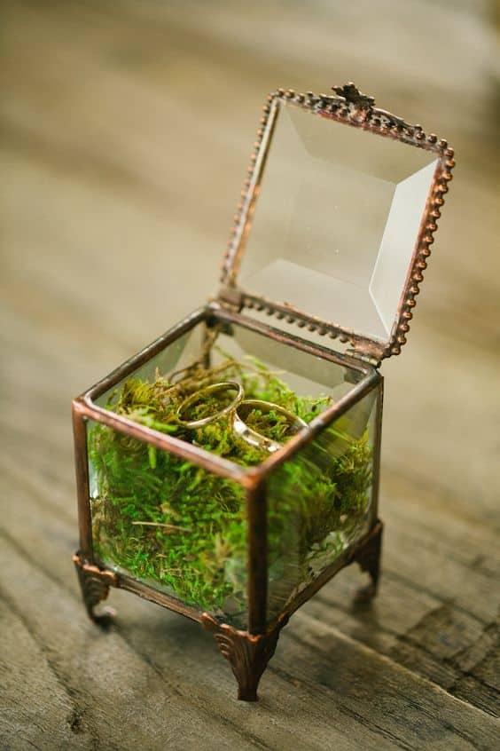 caja de musgo