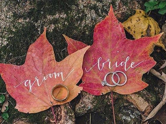 hojas de recién casados en otoño