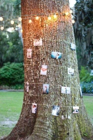 imagen de árbol